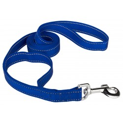 1 Inch Royal Blue Reflective Nylon Double Handle Dog Leash