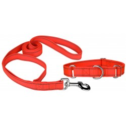 Blaze Orange Reflective Nylon Martingale Dog Collar & Double Handle Leash
