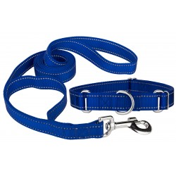 Royal Blue Reflective Nylon Martingale Dog Collar & Double Handle Leash