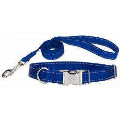 Premium Royal Blue Reflective Nylon Dog Collar & Leash