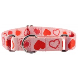 Happy Hearts Martingale Dog Collar