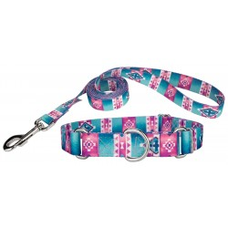 Albuquerque Featherweight Martingale Dog Collar & Leash - Extra Small