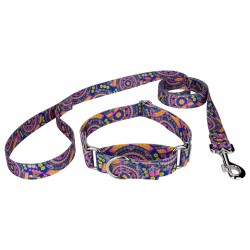 Blue Boho Mandala Martingale Dog Collar & Leash