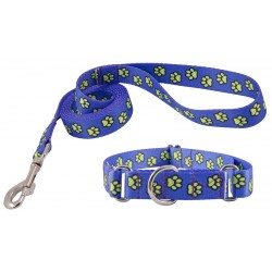 Blue Busy Paws Martingale Dog Collar & Leash