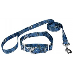 Blue Paisley Martingale Dog Collar & Leash