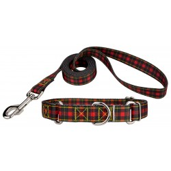 Buffalo Plaid Martingale Dog Collar & Leash