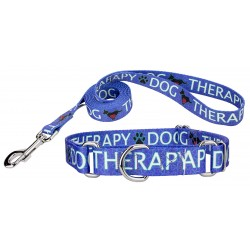 Blue Therapy Martingale Dog Collar & Leash