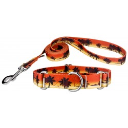 Caribbean Sunset Martingale Dog Collar & Leash