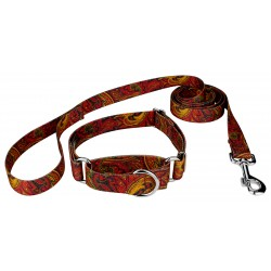 Fire Paisley Martingale Dog Collar & Leash