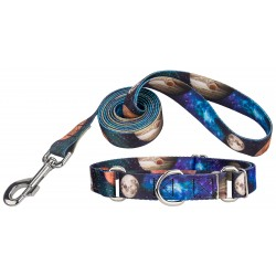 Galactic Neighbors Martingale Dog Collar & Leash