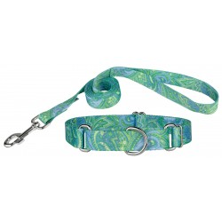 Green Paisley Martingale Collar & Leash