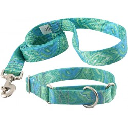 Green Paisley Featherweight Martingale Collar & Leash - Mini