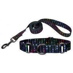 Colorful Arrows Gunmetal Martingale Dog Collar & Leash