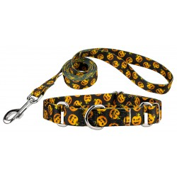 Happy Jack Featherweight Martingale Dog Collar & Leash - Extra Small