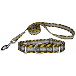 Industrial Ramp Martingale Dog Collar & Leash Limited Edition