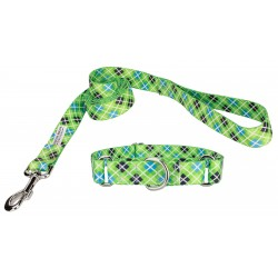 Margarita Argyle Martingale Dog Collar & Leash