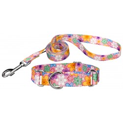 May Flowers Featherweight Martingale Dog Collar & Leash - Mini