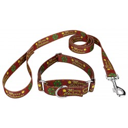 Merry Christmas Martingale Dog Collar & Leash