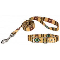 Native Arizona Martingale Dog Collar & Leash