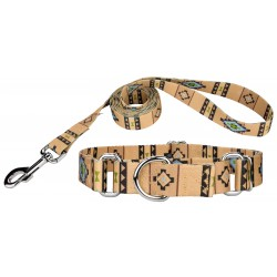 Native Southwestern Martingale Dog Collar & Leash