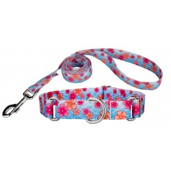 Pink April Blossoms Martingale Dog Collar & Leash