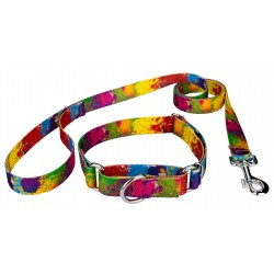 Paint Splatter Martingale Dog Collar & Leash