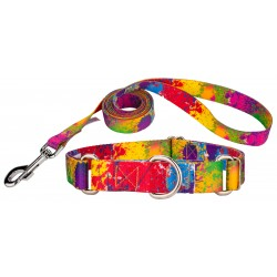 Paint Splatter Featherweight Martingale Dog Collar & Leash - Extra Small