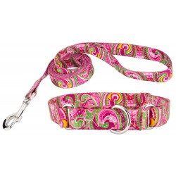 Pink Paisley Featherweight Martingale Dog Collar & Leash - Mini