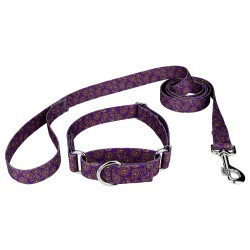 Purple Paisley Featherweight Martingale Dog Collar & Leash - Extra Small