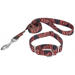Patriotic Tribute Featherweight Martingale Dog Collar & Leash - Extra Small