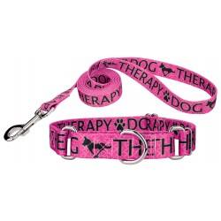 Pink Therapy Martingale Dog Collar & Leash