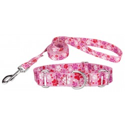 Puppy Love Martingale Dog Collar & Leash