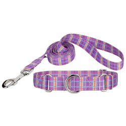 Grape Plaid Featherweight Martingale Dog Collar & Leash - Extra Small