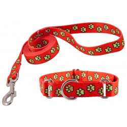 Red Busy Paws Martingale Dog Collar & Leash