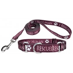 I Rescued My Human Martingale Dog Collar & Leash