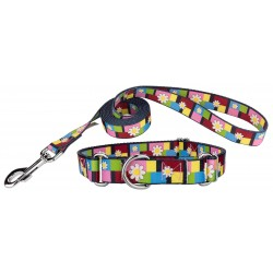 Spring Daisies Martingale Dog Collar & Leash