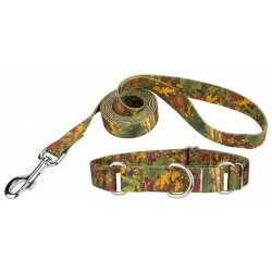 Southern Forest Camo Martingale Dog Collar & Leash