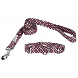 Shibuya Martingale Dog Collar & Leash