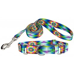 Tie Dye Flowers Featherweight Martingale Dog Collar & Leash - Extra Small