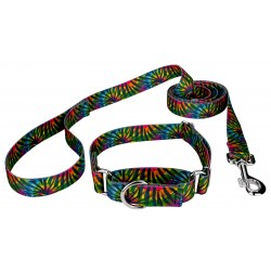 Tie Dye Stripes Martingale Dog Collar & Leash