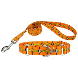 When Pumpkins Fly Martingale Dog Collar & Leash
