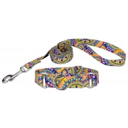 Yellow Boho Mandala Featherweight Martingale Dog Collar & Leash - Extra Small