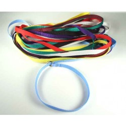50 - 1/2 Inch 4 ft Polypro Grooming Slip Leads - Assorted Colors