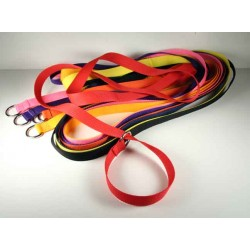 50 - 1 Inch 6 Foot Polypro Kennel Slip Leads - Assorted Colors