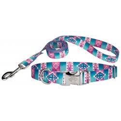 Albuquerque Premium Dog Collar & Leash