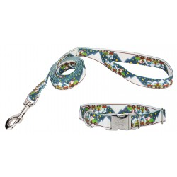 Arctic Express Premium Dog Collar & Leash Limited Edition