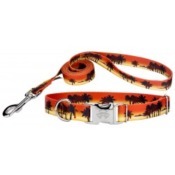 Caribbean Sunset Premium Dog Collar & Leash