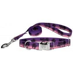 Caribbean Twilight Premium Dog Collar & Leash