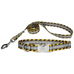 Industrial Ramp Premium Dog Collar & Leash Limited Edition