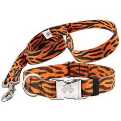 Orange Tiger Stripe Premium Collar & Leash